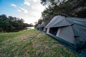 Carney Corner Camping